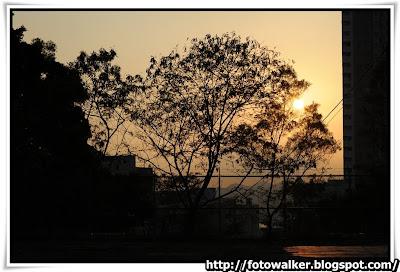 葵盛上海水配水庫