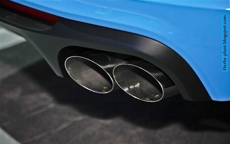Ford mustang car 2013 exhaust - صور شكمان سيارة فورد موستانج 2013