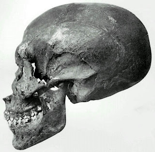Skull from KV55