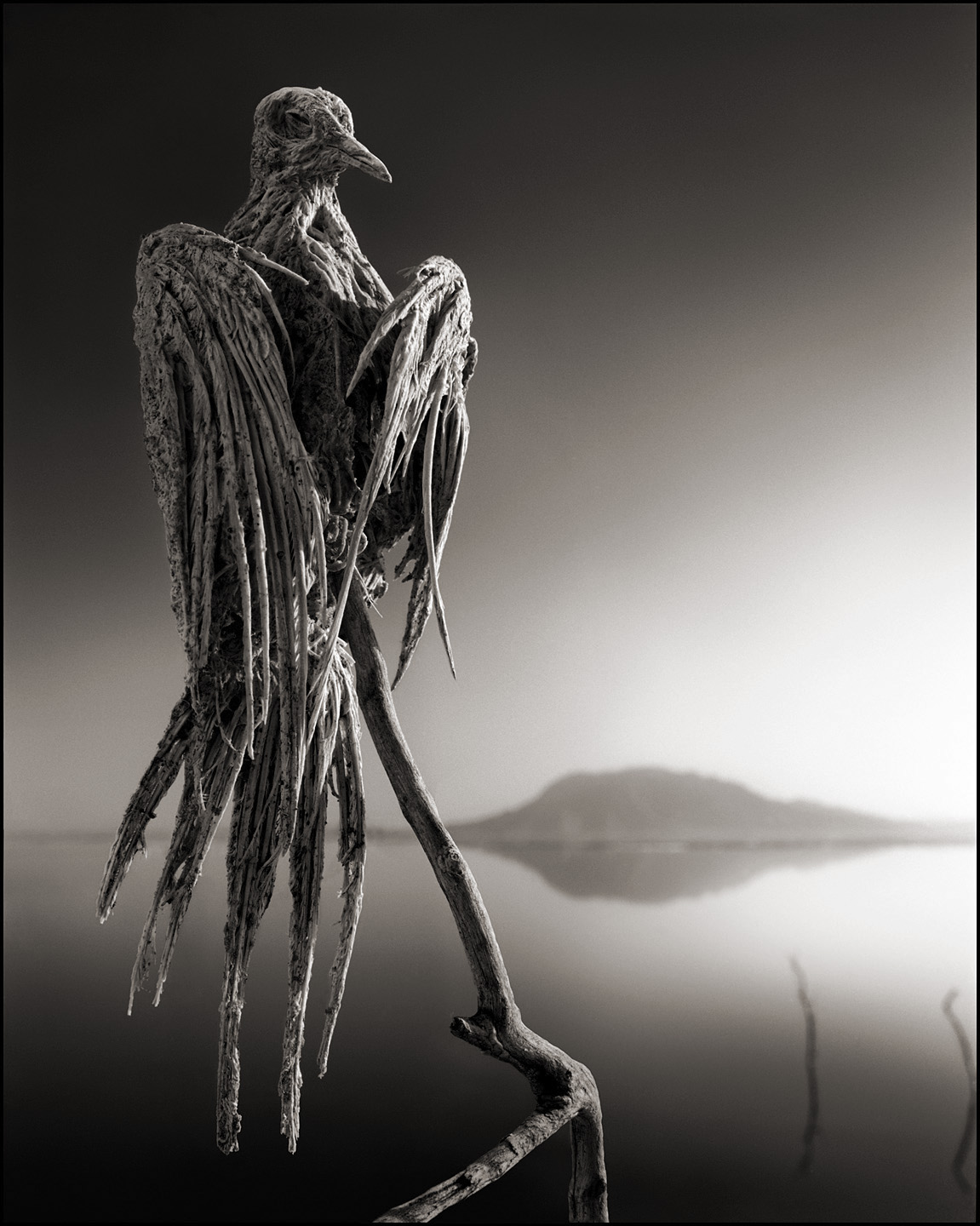 Lake Natron - Hell Like Lake That Turns Its Victims To Stone