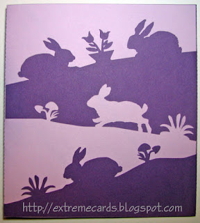 positive negative card of rabbits