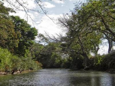Río Lagarto