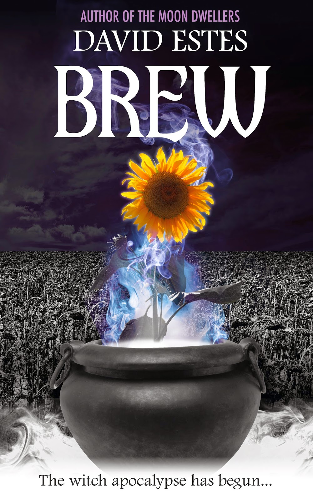https://www.goodreads.com/book/show/18050390-brew?from_search=true