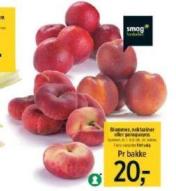 bedste frugt til sædceller
