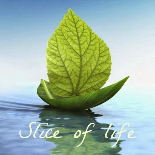 Блог моего сына - Slice of life