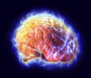 دراسة غريبة : الحمية تدفع خلايا الدماغ لأكل نفسها