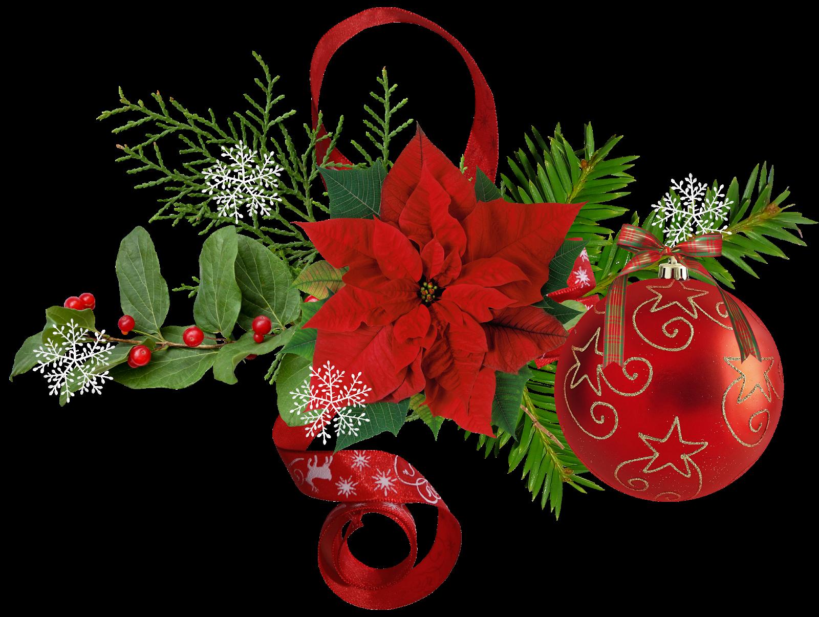 Blog cat lico navide o im genes de flores de navidad - Imagenes flores de navidad ...