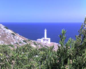 Faro Punta Palascia su Wikipedia