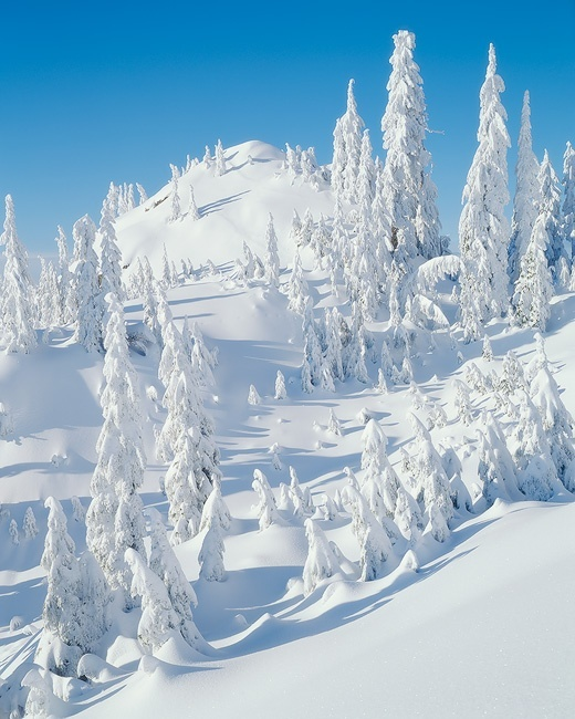 Mt. Seymour, British Columbia, Canada - 19 Breathtaking Photos Of Winter Wonderlands Around The World