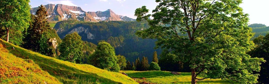 Cazare munte Busteni Valea Prahovei
