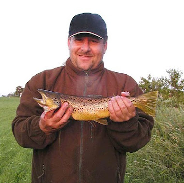 Denmark Brown Trout