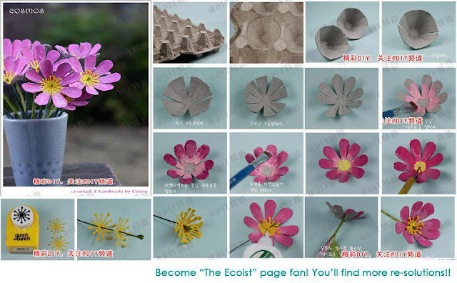 Flowers,by reusing egg carton