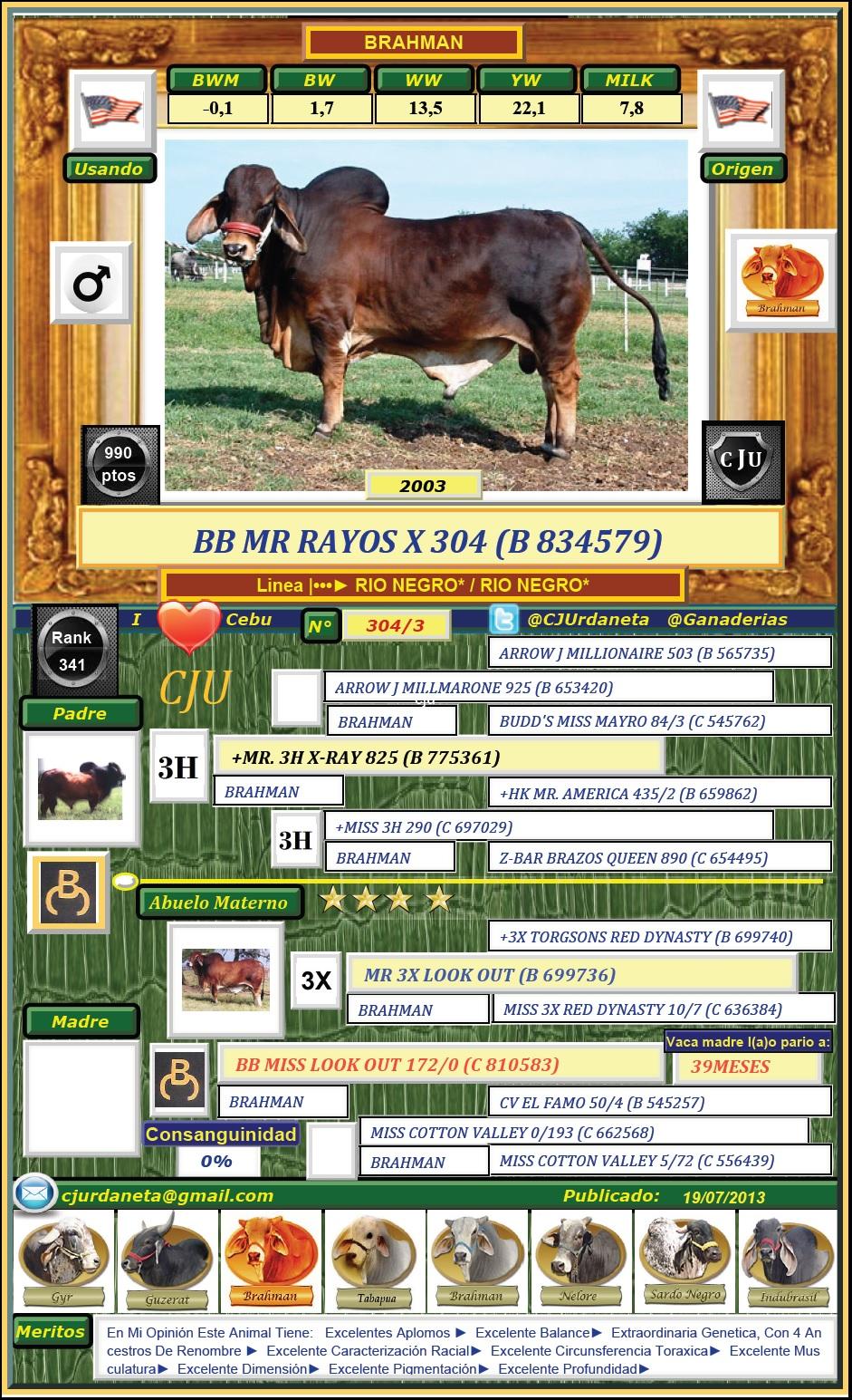 BB MR RAYOS X 304 (B 834579)