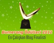 en çalışkan blog ödülü