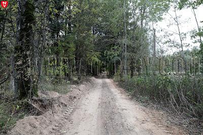 Дорога в польский пограничный пункт Шаповалы