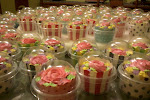 Cupcakes Dlm Dome Casing
