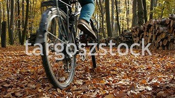 http://footage.shutterstock.com/clip-4961420-stock-footage-two-cyclists-in-a-park-in-autumn-riding-away-from-the-camera-jib-bottom-up-movement.html?src=gallery/WVTPg__2Vb0vtEeqM1N9qA:1:56