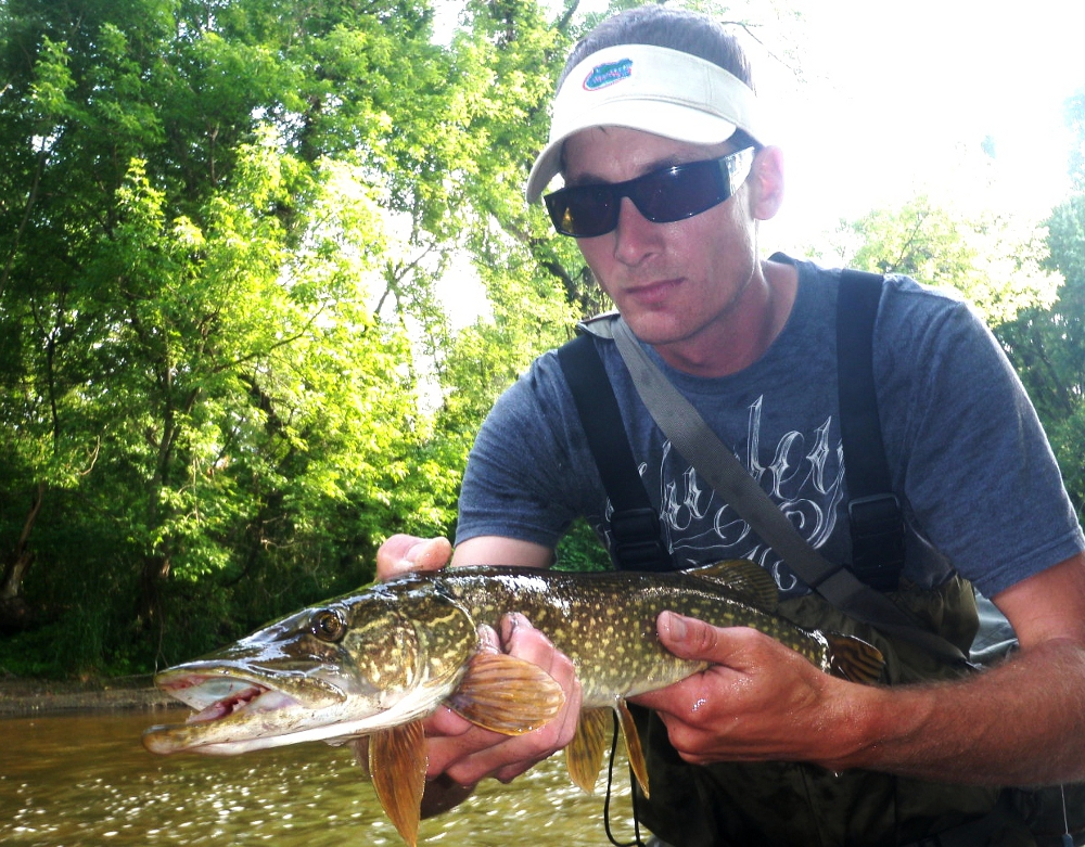 Illinois wisconsin fishing fly guy correspondence for Milwaukee river fishing