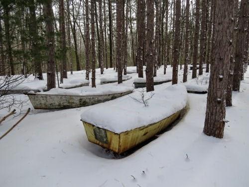 boats in snowy woods