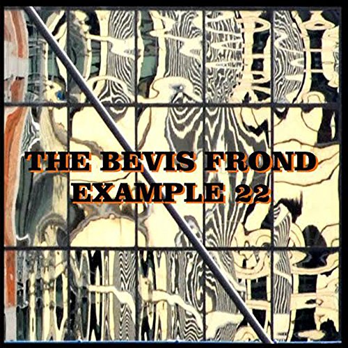 The Bevis Frond Bevis Through The Looking Glass The Great Magnet Disaster