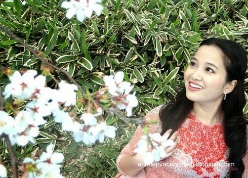Mc Hồng Phượng ngẩn ngơ trước hoa anh đào Nhật Bản 6