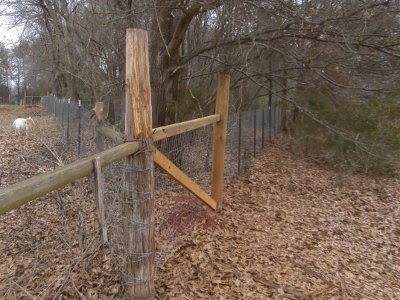 5 Acres & A Dream: Fencing Project: Finishing The Doe Browse