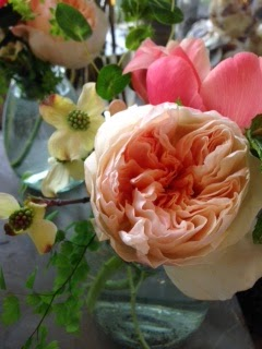 les fleurs : juliet garden roses : coral peony : dogwood