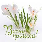 Гостья-весна!