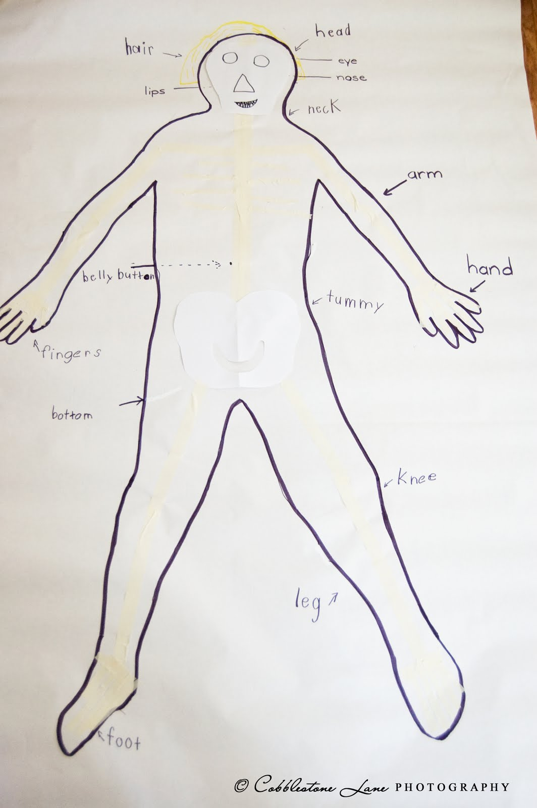 the nature of grace: week's theme: my body (body mapping activity), Cephalic Vein