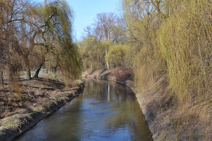 Galeria: Rzeka