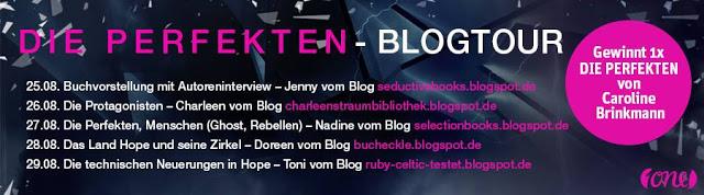Blogtour Die Perfekten