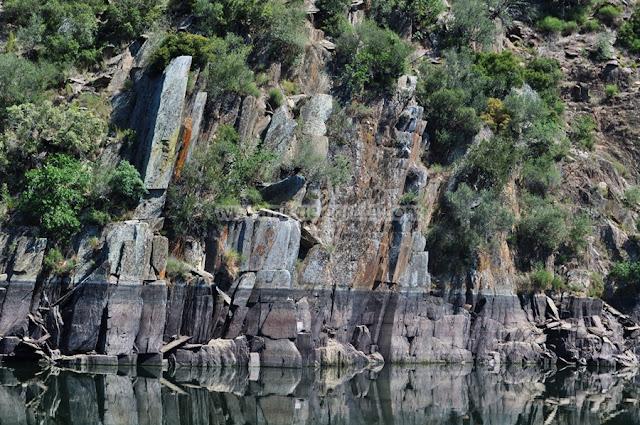Paseo Fluvial Tajo Inernacional