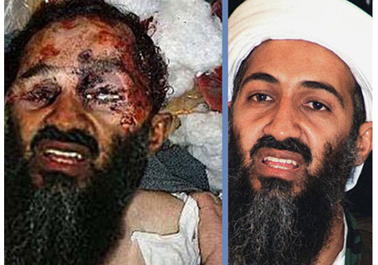 osama in laden is irrelevant. osama in laden is irrelevant.