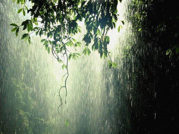 Keajaiban Hujan Dalam Al-Quran & Hadist