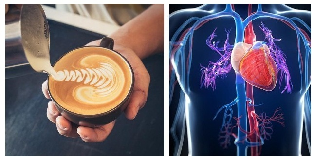 cofee and its effects on body organs