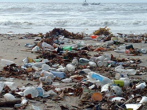 essay on plastic water bottles