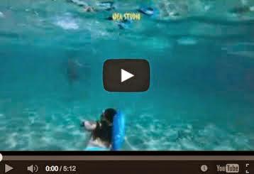 Άρτεμις - Πρωινές βουτιές στα γαλάζια νερά