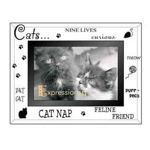 cat picture frames 4x6 product description