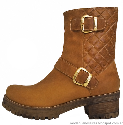 Botas y botinetas otoño invierno 2014. Moda otoño invierno 2014 zapatos.