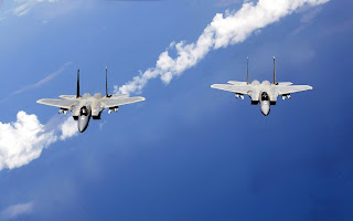 f 15 eagles from the air national guard (55)