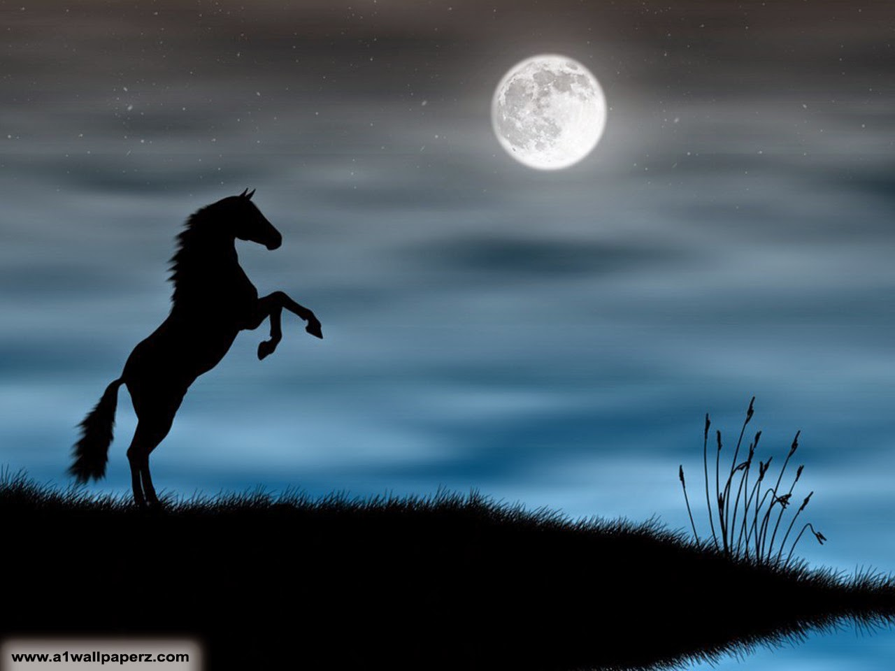 Good   Wallpaper Horse Night - romantic-moonlight-wallpaper-large-8  You Should Have_41540.jpg