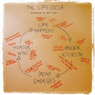 The Life Cycle According to Sod's Law