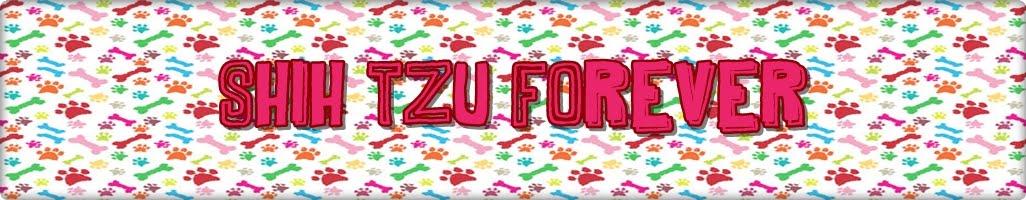Shih-Tzu Forever