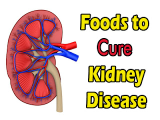 Foods to Cure Kidney Disease