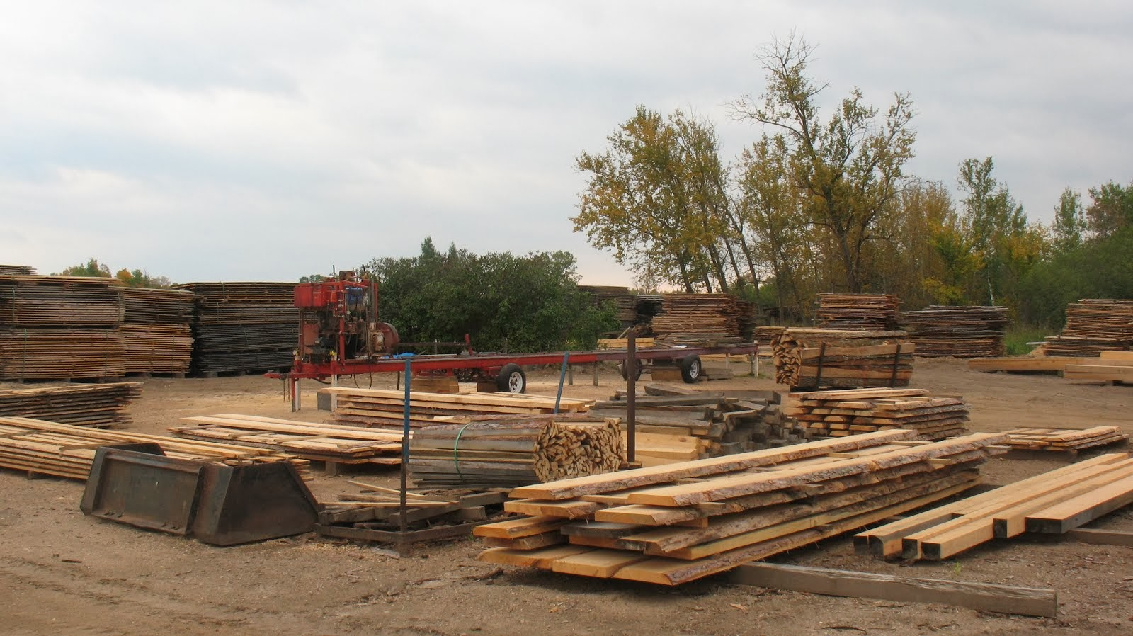 Wille logging lumber timber equipment for sale for Timber decking for sale