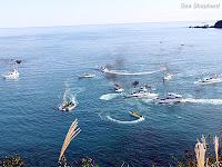 Sea Shepherd faz oferta para a China para proteger a fauna marinha nas ilhas Diaoyu