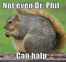 squirrel with an eating disorder