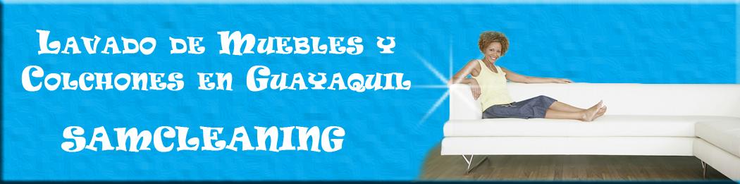 Lavado de Muebles y Colchones en Guayaquil SAMCLEANING