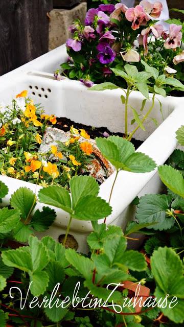 Waschbecken im Garten als Blumentopf