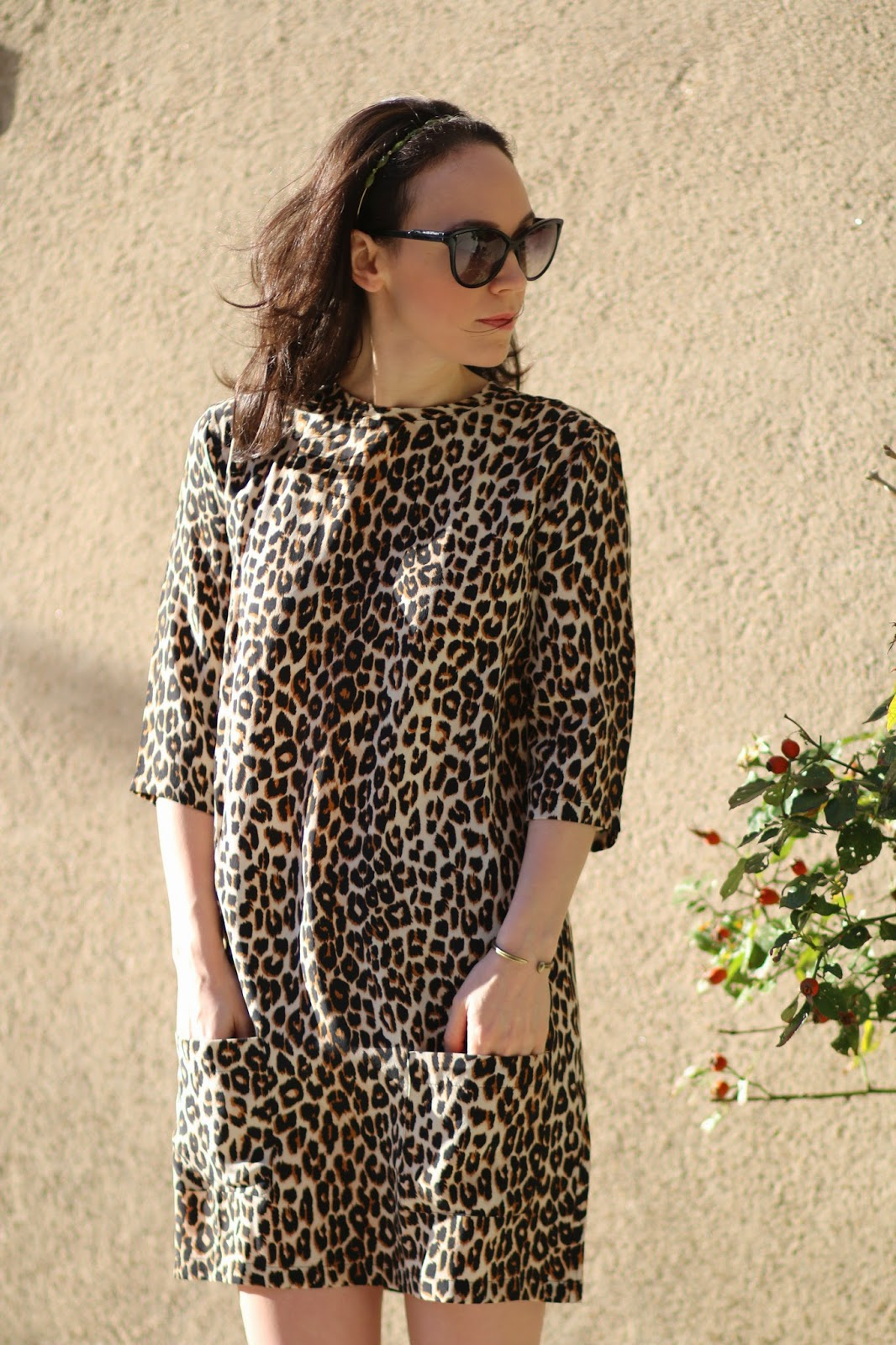 Equipment Leopard Dress